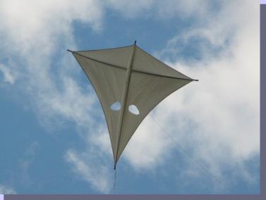 Finbat War Kite